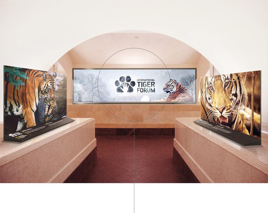 Оформление Дворца Конгрессов для Международного тигриного форума